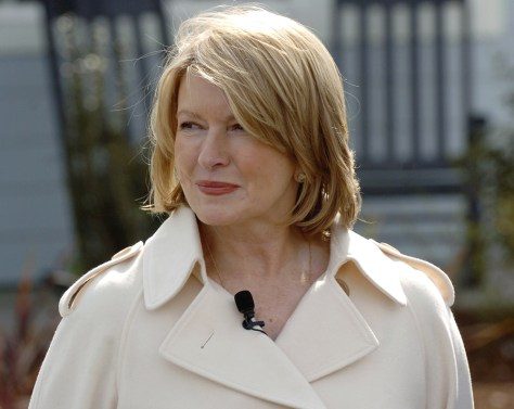 scandals martha stewart and the imclone