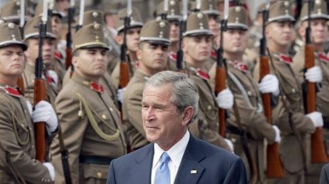 IMAGE: Bush reviews Hungarian troops