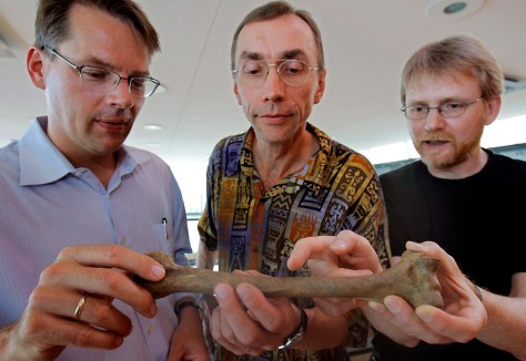 Scientists with Neanderthal bone