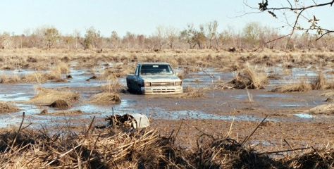 Image: Pickup in marsh debris
