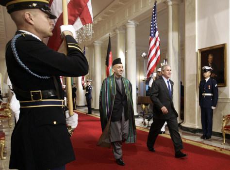 Image: Bush, Karzai