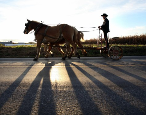 Image: Amish man rides to girl's funeral