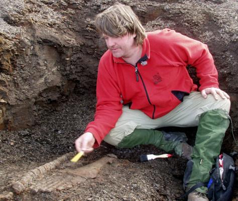 Image: Plesiosaur excavation
