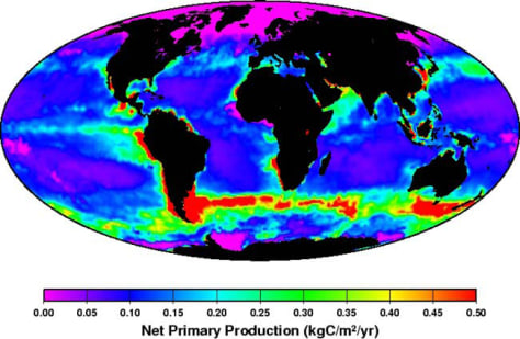 Image: Distribution of phytoplankton power