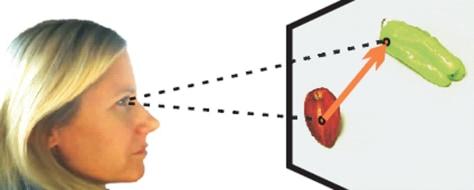 Image: Human eye at work
