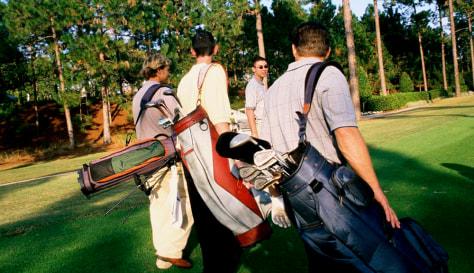Image: Golfing buddies