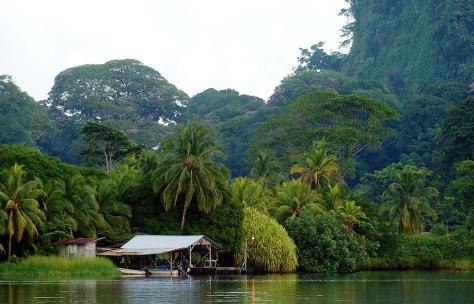 COSTA RICA TORTUGUERO