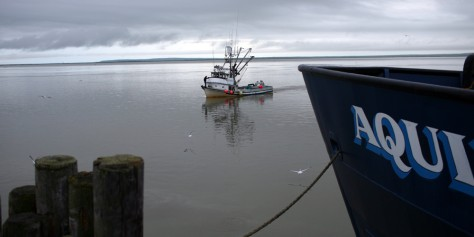 Image: Fishing boat in Bristol Bay
