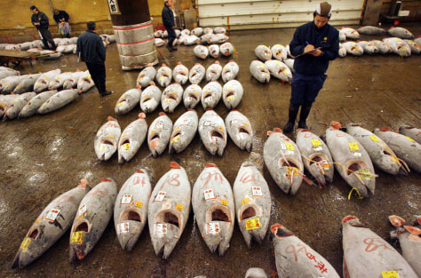IMAGE: TUNA AUCTION