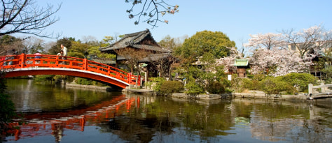 Image: Sacred Spring Garden