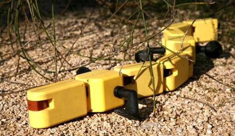 Image: Salamander robot