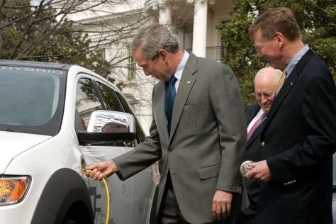 Bush Plugging