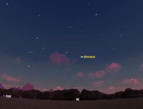 Image: Night sky