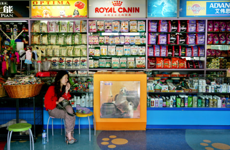 Image: Woman in pet store