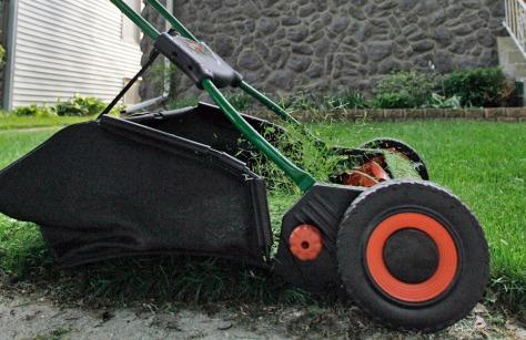 Image: Lawn mower