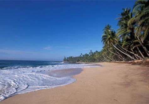 Image: Sri Lanka's Amanwella beach