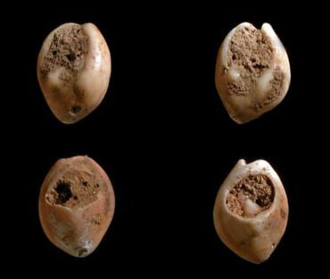 Image: 80,000-year-old beads