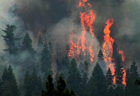 Image: Blaze near Lake Tahoe