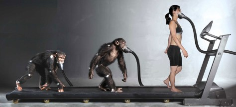 "Image: Photoillustration showing the ""Evolution of Man"""