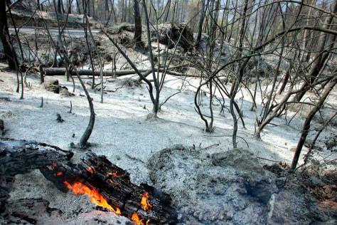 IMAGE: FIRE DAMAGE