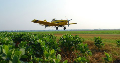 Image: Crop duster