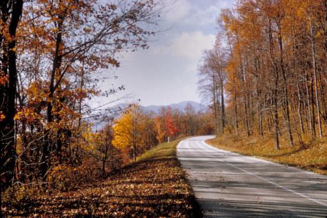 Image: The Blue Ridge Parkway