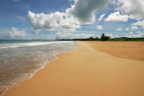 IMAGE: PUERTO RICO BEACH