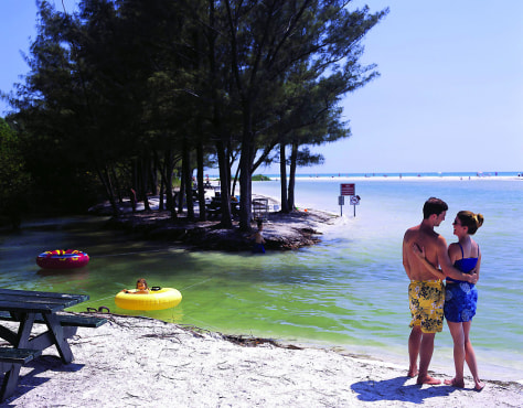 IMAGE: NORTH BEACH AT FORT DE SOTO PARK