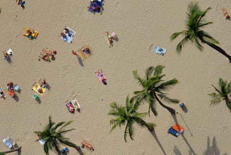 Image: Sunbathers on a Hawaii beach