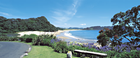 Hot Water Beach, Coromandel Peninsula, North Island, NZ.