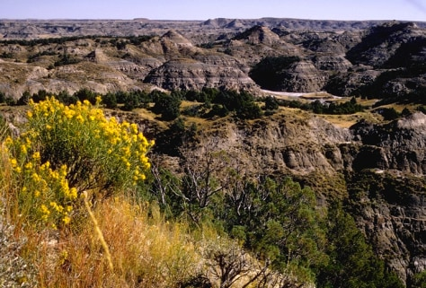 Image: Theodore Roosevelt National Park, North Dakota