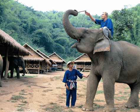 Image: Mahout Course, Thailand