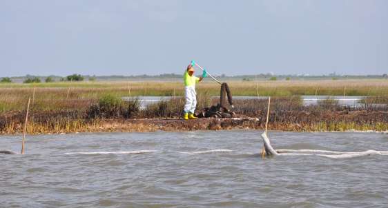 Image: Oil spill worker near Cocodrie, La.
