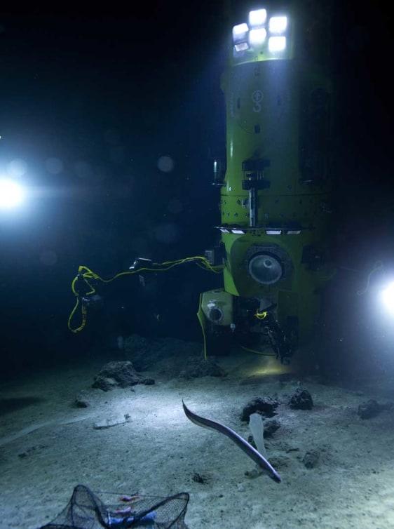 Image: Deepsea Challenger