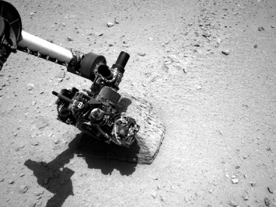 Image: Jake Matijevich rock studied