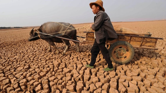Image: Chinese drought