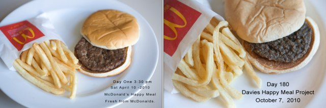 Image: Sally Davies' Happy Meal art project shows a McDonald's Happy Meal's decomposition (or lack thereof) at 180 days
