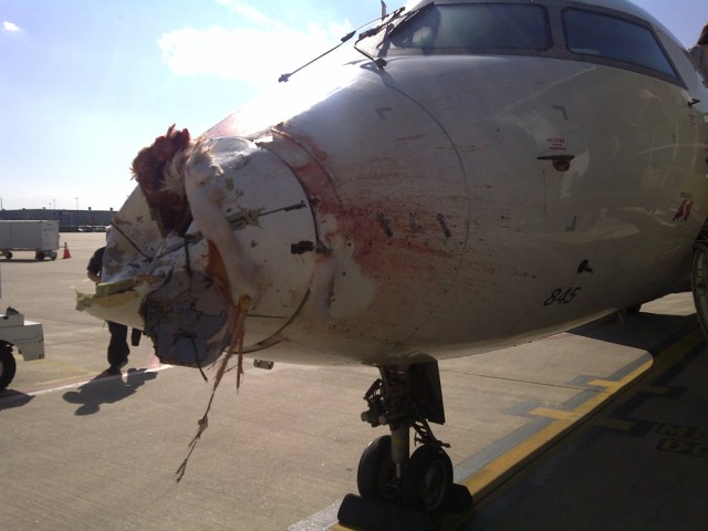Image: Damaged Delta plane