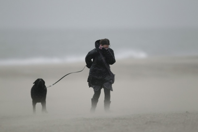 Image: Woman, dog battle wind