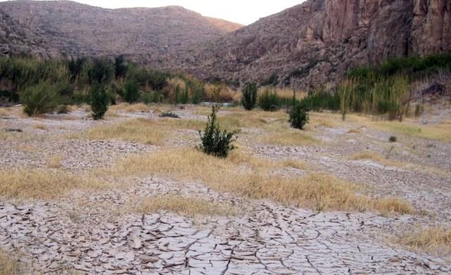 Image: Dry river bed along Rio Grande