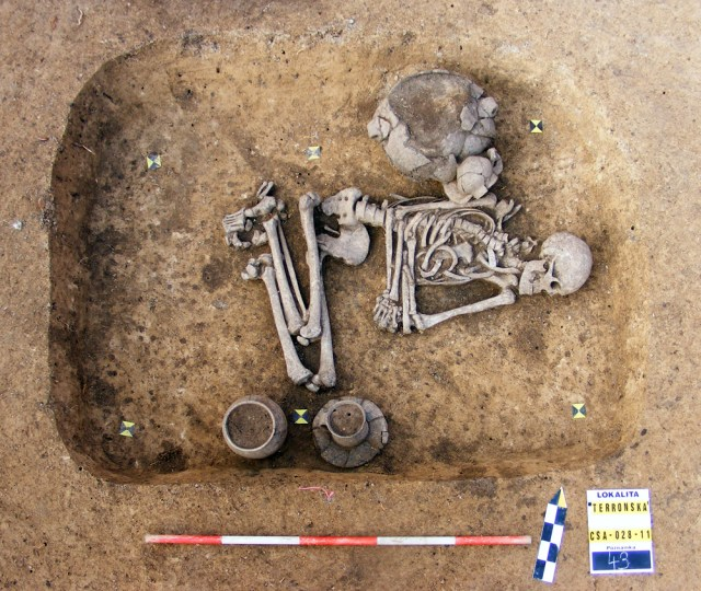 The skeleton of a Stone-Age man found on the outskirts of Prague.
