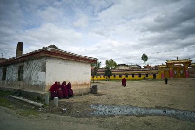 Image: Buddhist monks near the Kirti monastary in the town of Aba in China's Sichuan province