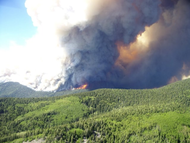 Image: Smoke rises into the air from a large forest fire in Gila National Forest, New Mexico