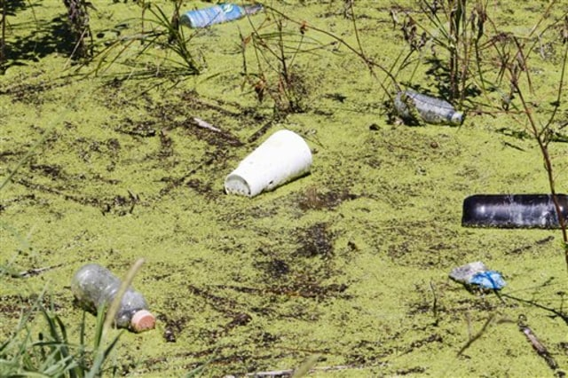 Image: Algae, trash in flooded field