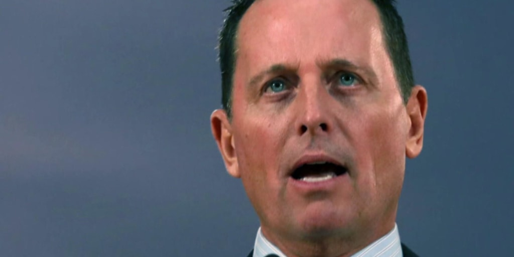 Naming of Grenell 'ridiculously insane', says professor
