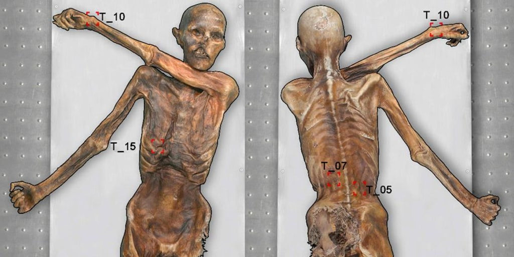 Otzi The Iceman Tattoos - Tattoo Collections