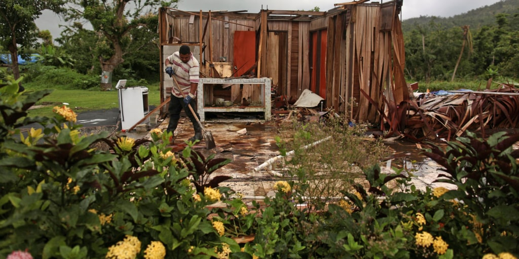 Puerto Rico suspends $133M contract awarded to firm of Trump's failed nominee