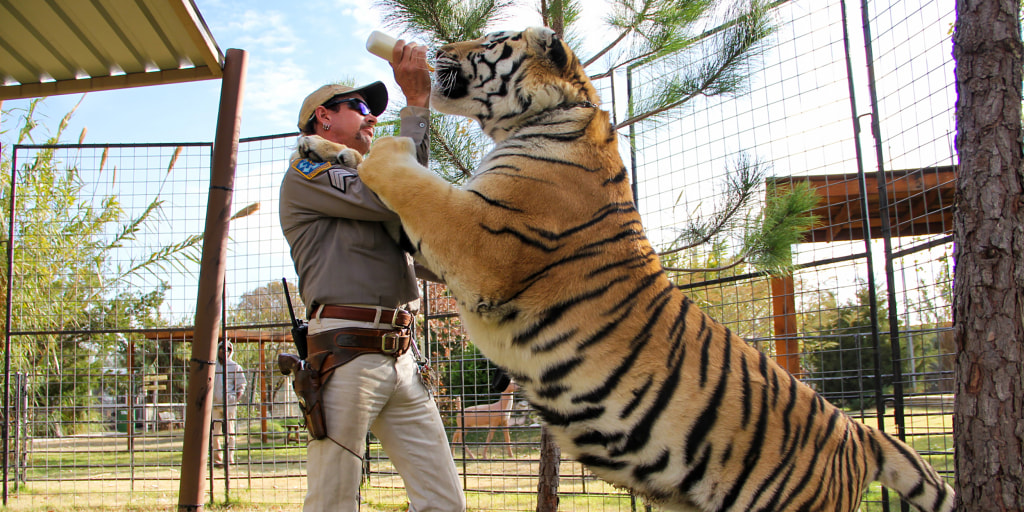 Tiger King' cast says 'justice was served' for Joe Exotic, plus ...