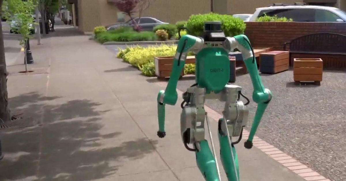 nn gsc package carrying robot 190524 1920x1080 nbcnews fp 1200 630