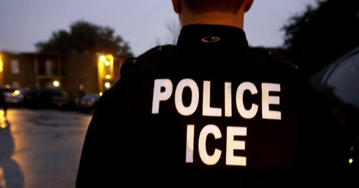 Why were Trump's mass immigrant raids postponed?